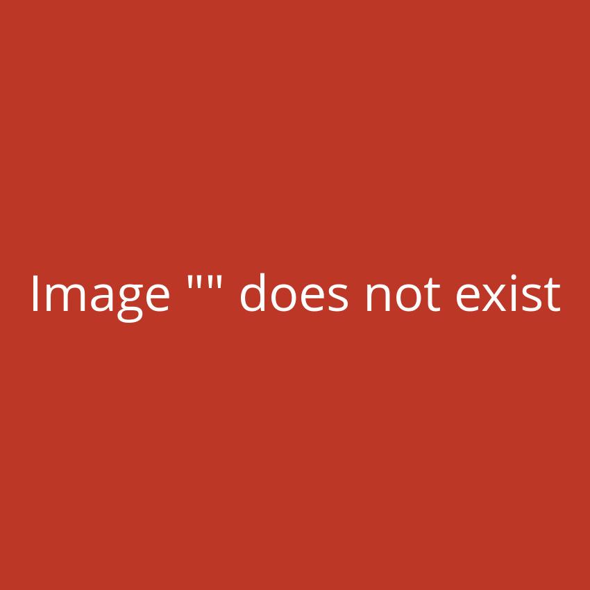 disponibile in diversi colori e diverse misure TecTake Tende da sole paravento laterale frangivento estensibile Beige | 160x300cm | no. 401526